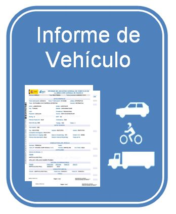 Informe Vehiculo